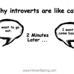 The problem only an introvert personality will understand (*hint* it makes us like a cat)
