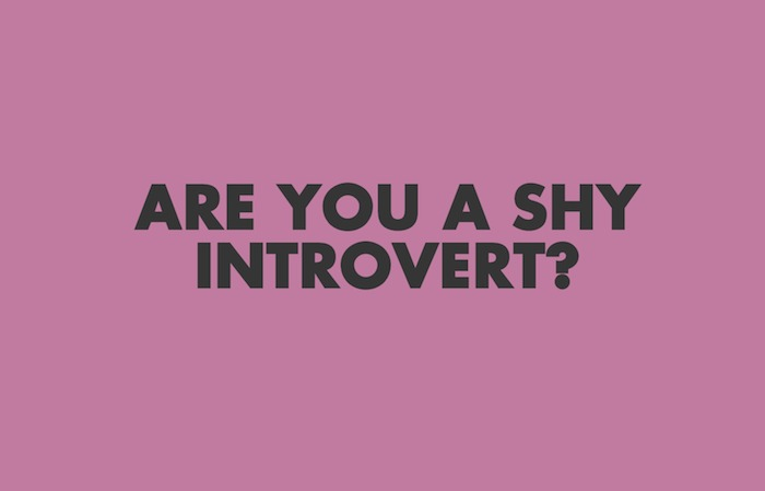Image result for are introverts shy