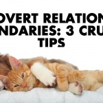 Introvert Relationship Boundaries: 3 Crucial Tips