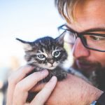Why Introverts Need Animal Friends ♥