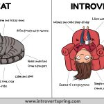 Funny Comic Explains Why Introverts Are Like Cats
