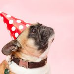 11 Crazy Relatable Things Introverts Do at Parties